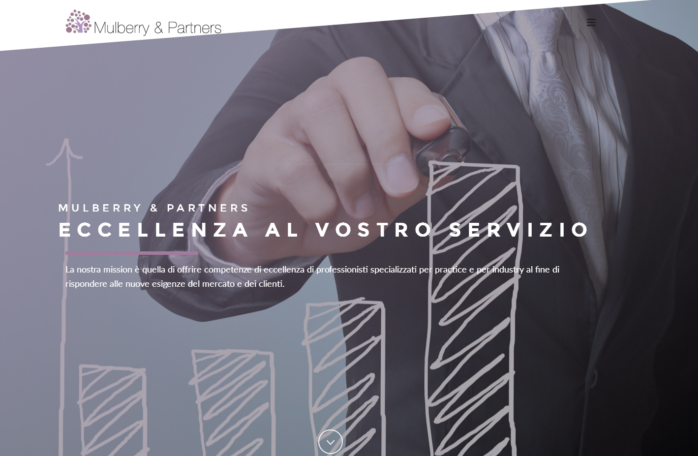 Mulberry&Partner Sito Web 2016