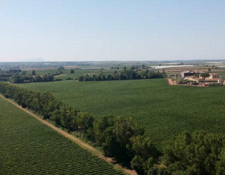 Casale del Giglio – Riprese con drone – Giugno 2019